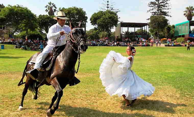 Caballo de Paso Pachacamac
